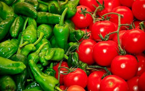 Tierra de periodistas brindar n capacitaci n sobre for Plantar pimientos y tomates